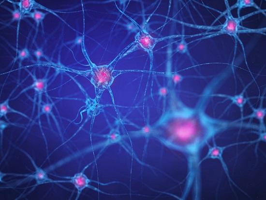 Introducción a Redes Neuronales